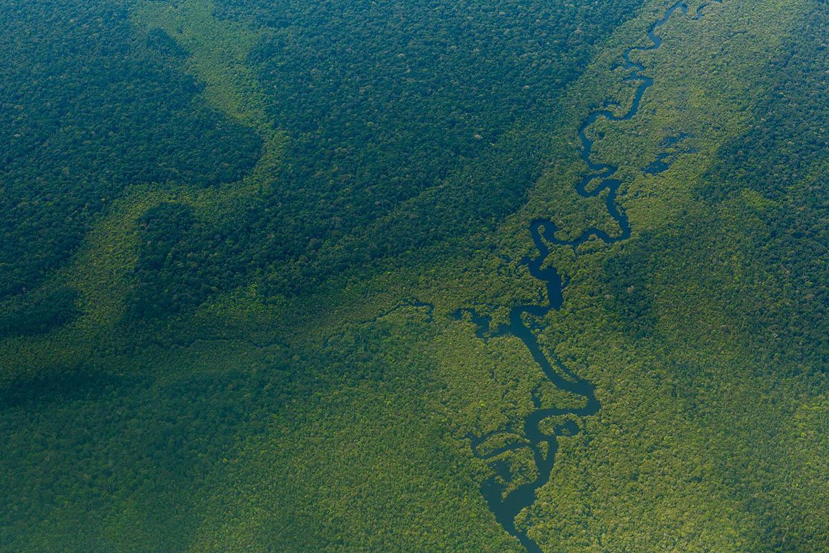 El Amazonas, un árbol de ríos en peligro
