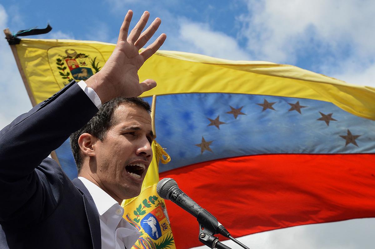 Bicefalia en Venezuela